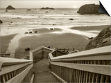 Pathway to Beach - Sepia Art by Dennis Frates