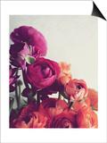 Lovely Day Prints by Lupen Grainne
