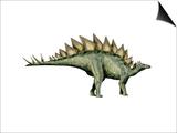 Stegosaurus Dinosaur Posters
