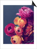 Deep Blooms Poster by Lupen Grainne