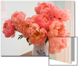 Peonies in Porcelain Vase Prints by Henri Silberman