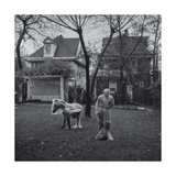 Brooklyn Lawn Statues Photographic Print by Henri Silberman
