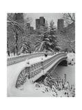 Central Park Pine Bank Arch Bridge Snow Photographic Print by Henri Silberman