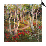 Four Seasons Aspens I Prints by Nanette Oleson