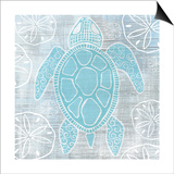Sea Turtle Prints by Shanni Welsh