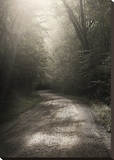 Back Country Road Stretched Canvas Print by Nicholas Bell