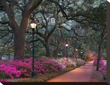 Forsythe Park Stretched Canvas Print by Winthrope Hiers