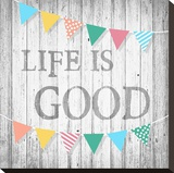 Life is Good Stretched Canvas Print by Alicia Soave