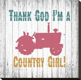 Country Girl Stretched Canvas Print by Alicia Soave