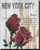 New York Roses Stretched Canvas Print by Alicia Soave