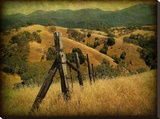 Weathered Ranch Fence Stretched Canvas Print by William Guion