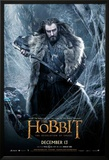 The Hobbit: The Desolation of Smaug Prints