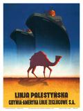 The Palestinian Line Posters by Tadeusz Trepkowski