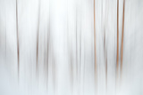 Fog Photographic Print by Ursula Abresch