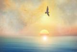 Pájaro Lámina fotográfica por Viviane Fedieu Daniel
