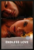 Endless Love Posters