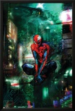 Timestorm 2009/2099 No.1 Cover: Spider-Man Photo by Christopher Shy