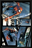 Spectacular Spider-Man No.13 Cover: Spider-Man Photo by Scott Damion