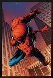 Amazing Spider-Man No.641: Spider-Man Swinging Photo by Joe Quesada