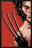 Wolverine No.16 Cover: Wolverine Prints by Jae Lee