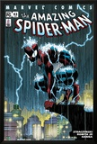Amazing Spider-Man No.484 Cover: Spider-Man Crouching Prints