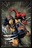 Savage Wolverine 6 Cover: Spider-Man, Wolverine Photo by Joe Madureira