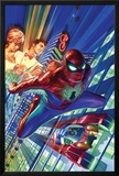 Amazing Spider-Man 1 Cover Posters by Alex Ross