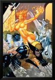 Secret Invasion: X-Men No.4 Cover: Wolverine and Phoenix Art par Terry Dodson