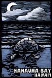 Hanauma Bay, Hawai'i - Sea Turtle - Scratchboard Plastic Sign by  Lantern Press