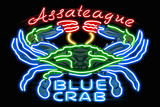 Assateague, Maryland - Blue Crab Neon Sign Plastic Sign by  Lantern Press
