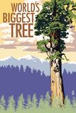 World's Biggest Tree - National Park WPA Sentiment Plastic Sign by  Lantern Press