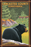 Lancaster County, Pennsylvania - Black Bear in Forest Plastic Sign by  Lantern Press