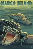 Marco Island - Alligators Plastikskilte af Lantern Press