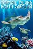 Topsail Island, North Carolina - Sea Turtles Plastic Sign by  Lantern Press