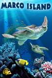 Marco Island - Sea Turtles Swimming Wall Mural by  Lantern Press