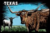 Texas - Longhorn - Scratchboard Plastic Sign by  Lantern Press
