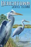 Beachtown - Jekyll Island, Georgia - Blue Herons Plastic Sign by  Lantern Press