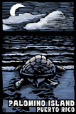 Palomino Island, Puerto Rico - Sea Turtle on Beach - Scratchboard Kunststof bord van  Lantern Press