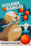 Golden Retriever - Retro Oranges Ad Plastic Sign by  Lantern Press