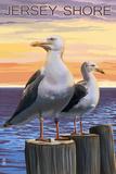 Jersey Shore - Seagulls Signe en plastique rigide par  Lantern Press