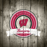 Wisconsin Badgers Logo on Wood Poster by  Lulu