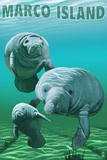 Marco Island - Manatees Wall Mural by  Lantern Press