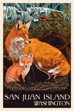Friday Harbor, San Juan Island, WA - Fox and Kit Plastic Sign by  Lantern Press