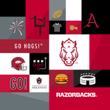 University of Arkansas Razorbacks Canvas Square Prints by  Lulu