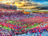 Arizona: Victory at Arizona Stadium Photographic Print