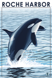 Roche Harbor, WA - Orca Jumping Plastic Sign by  Lantern Press
