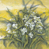 White Orchids Giclee Print by Cai Xiaoli