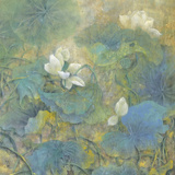 Summer Lotus Giclee Print by Cai Xiaoli