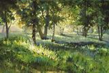 Sunlit Glade Giclee Print by Martha Saudek