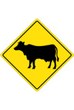 Cow Crossing Sign Poster Posters